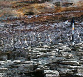 Sturgeon Point Fractures Zoom